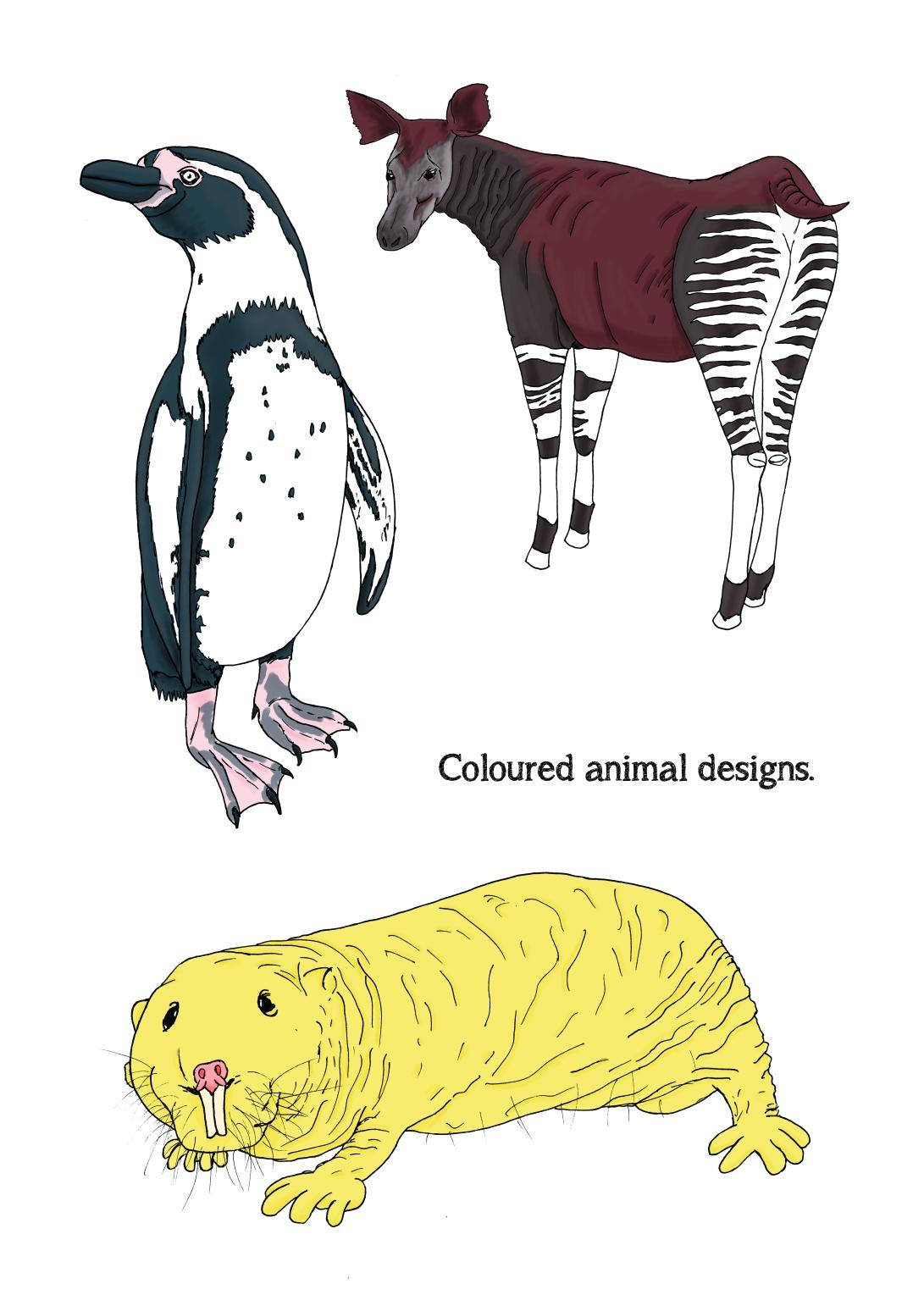 14 Coloured animal selection